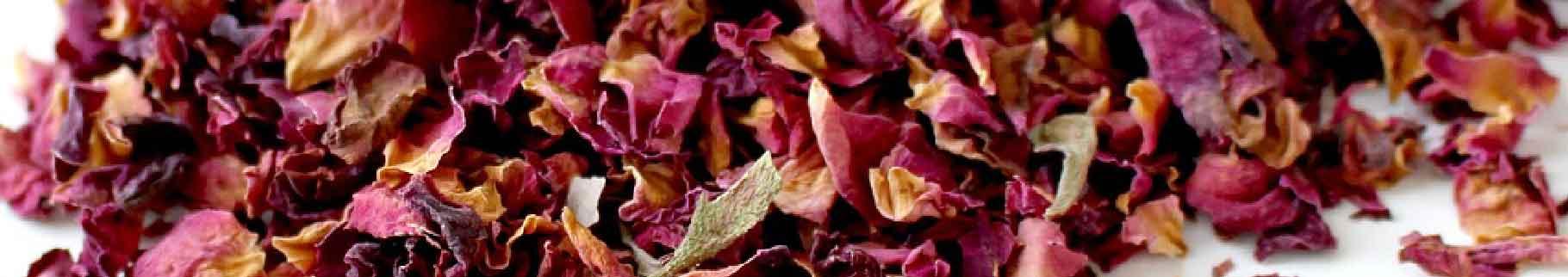 Symbolbild Rauchentwöhung - Blütenduft statt Tabakbrauch